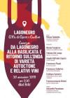 Dal Lagonegro alla Basilicata e ritorno sull'onda di varietà autoctone e relativi vini